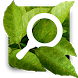 Plant Doctor Simulator by CABI