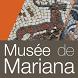 Mariana by Vox Inzebox