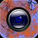 Camera by Video Media Gallery