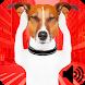 Sound To Repel Dogs Prank