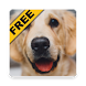 Dog wallpapers and funny pics by APP-6