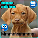 Imagenes gratis locas by juegosapp