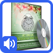 Beat Procrastination Hypnosis by Memory Lane