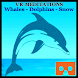 VR Meditations:Whales Dolphins by ANTMultimedia, LLC