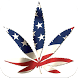 The Cannabis Daily by Uply Media Inc.