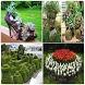 Unique Garden Ideas by airapps