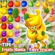 Tips Fruits Mania : Fairy rescue