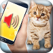Cat translator simulator by SmileTools