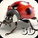 Ladybug 3D Live Wallpaper by FreeWallpaper