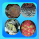 Marine Animals Picture Quiz by Bank Prove Productions