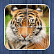 Jungle Puzzle - fun for kids by Puzzle King AB