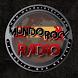Mundo Rock Radio by Raccoon Hosting