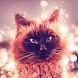 Cat live wallpaper