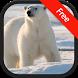 Polar Bear Sounds by RinradaDev