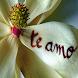Frases de Amor y Vida imágenes by Abujayyab