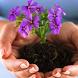 Выращивать цветы by BeautyClubDev