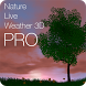 Nature Live Weather 3D PRO by Sergey Abadzhev