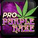 Marijuana Live Wallpaper - Purple Haze by Marijuana Wallpapers