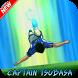 Guide Captain Tsubasa Dream Team by Alpha play