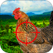 Infected Chicken Shooter- Shoot Hens by Wall Street Studio