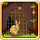Rabbit Escape from Cage by Cooking & Room Escape Gamers
