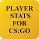 Player Stats for CS:GO (Unreleased) by Filip Radic