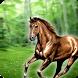 Jump Jungle Horse by Flip Art Studio