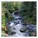 Creeks & Streams - Wallpapers by Hojasoft, LLC