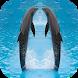 Dolphin wallpaper by Wisesoftware