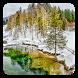 Winter Magic Live Wallpaper by Wallpaper qHD