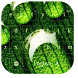 Green water drop Keyboard by live wallpaper collection