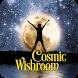 Cosmic Wishroom by Cosmic Waterhole, LLC