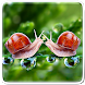 Perfect Nature Live Wallpaper by Art LWP