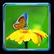 Photo Blur Background & DSLR Camera Effects Maker by Pro Data Doctor Pvt. Ltd.