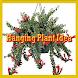 Hanging Plant Idea by delisa