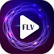MP4 FLV Video Player