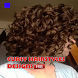 Curly Hairstyles by newerica