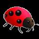 Sinirli Böcekler by Bozdoğan Oyun Programlama
