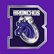 Bethany Broncho Athletics by Foundation for Educational Services, Inc.