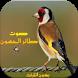 اصوات طائر الحسون بدون نت جديد by nanadev