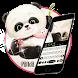 cute bear keyboard theme by theme master