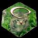 Cute Kitty Keyboard by Premium Keyboard Themes