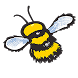 Haskins Buzzy Bee by Static Games Ltd.