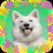 لعبة تركيب الحيوانات للاطفال by Yyas developers