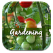 Home Vegetable Gardening Guide by MORIA APPS