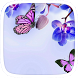 Purple Butterfly Theme by Featuredtheme