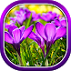 Beautiful Spring Flowers Live Wallpaper by Live Wallpapers 3D