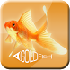 All About Goldfish by ACS Media Group