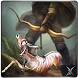 Animal Hunter Archery Quest by Xertz - Play Free Games
