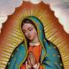 Virgen de Guadalupe by DBoxIM